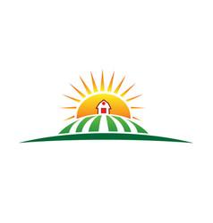 Sun and farm harvest label icon vector