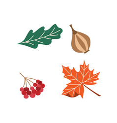 Thanksgiving set onion cranberry tree leaf vector