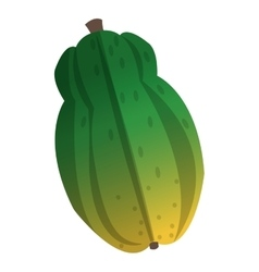whole papaya icon vector image