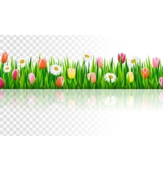 Seamless border with grass and flowers vector image