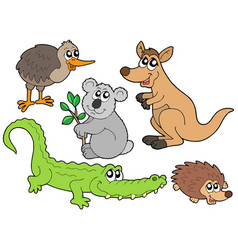 Australian animals collection vector