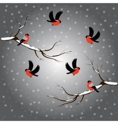 Bullfinch on branch snow merry christmas gray vector image