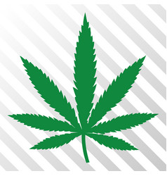Cannabis leaf eps icon vector
