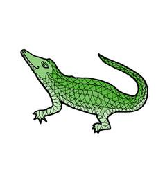 crocodile alligator zen tangle vector image