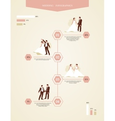 info graphics with gays and lesbians vector image