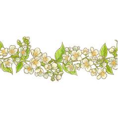 jasmine branch pattern vector image