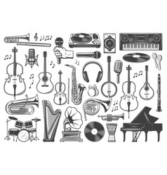 musical instruments music sound equipment vector image