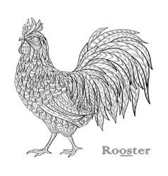 rooster in doodle style vector image