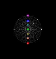 seed life symbol sacred geometry seven chakras vector image