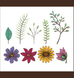 Set floral decoration vintage style vector