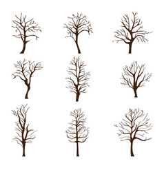 Set of different trees without leaves in autumn or vector