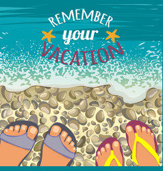 summer background with sea stones pair feet vector image