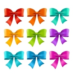 Bow Ribbon Colorful Set vector image