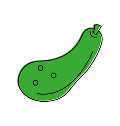 zucchini vegetable icon image vector image vector image
