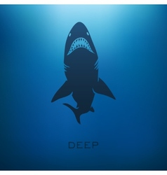 Shark concept vector image vector image