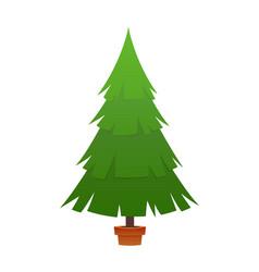 beautiful elegant green christmas tree vector image