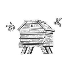 bee hive and bees sketch engraving vector image