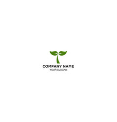 business company growth plant rise vector image