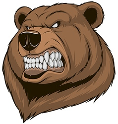 Ferocious bear vector