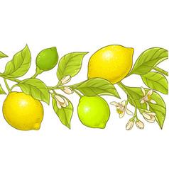 lemon branch pattern vector image
