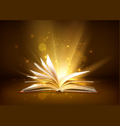 Mystery open book with shining pages fantasy book vector