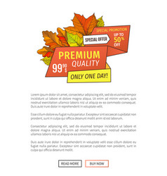 premium special offer day super half price poster vector image
