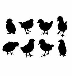 Shadow eight birds vector