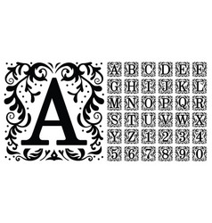 vintage monogram letters decorative ornamental vector image