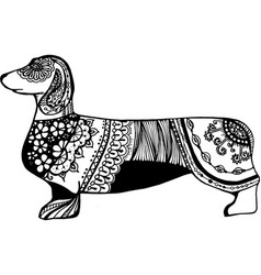 black dachshund from lace and ornament vector image