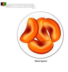 Dried Apricot A Popular Fruit in Afghanistan vector