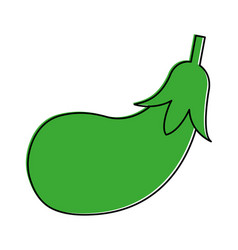Eggplant or aubergine vegetable icon image vector