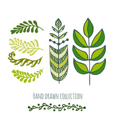 Ethnic green doodle leaves for spring or summer vector