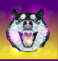 geometric head of husky dog with bright background vector image
