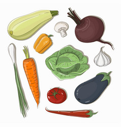 mixed vegetable - vegetable isolated set vector image
