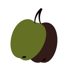Olive fruit natural icon vector