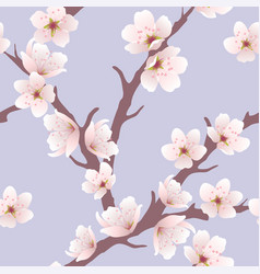 Seamless floral background with cherry blossom vector
