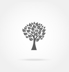 Tree with leaves icon vector