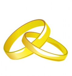Two gold wedding rings vector