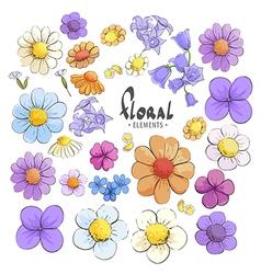 Variety wild flowers vector