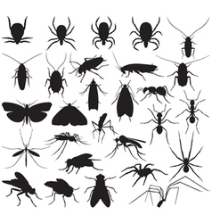 Silhouette household pests vector image vector image
