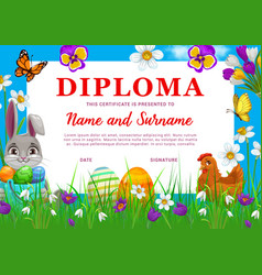 Diploma or certificate with easter eggs and bunny vector