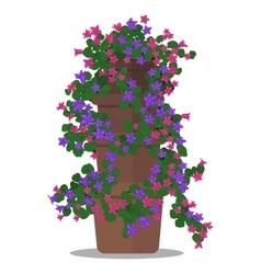 floral arrangement in pot vector image