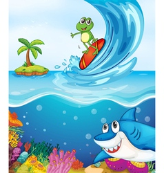 Frog and shark fish in sea vector