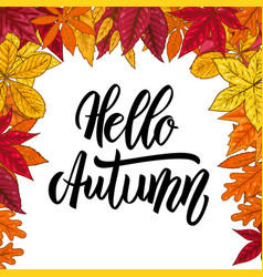 hello autumnborder with autumn leaves design vector image