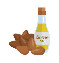 linseed oil in flat design vector image