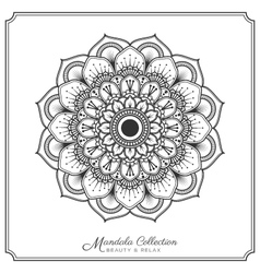 mandala decorative ornament design vector image