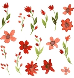 Set watercolor drawing red flowers vector