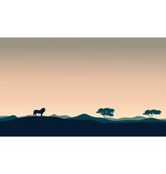 Beautiful landscape lion silhouettes vector image vector image