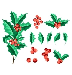 Christmas Holly Berry Set vector