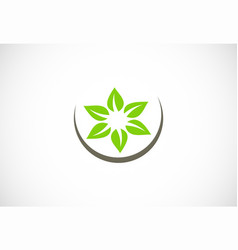green leaf circle organic logo vector image
